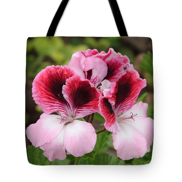 Tote Bag featuring the photograph Shades Of Pink 2 by Lew Davis