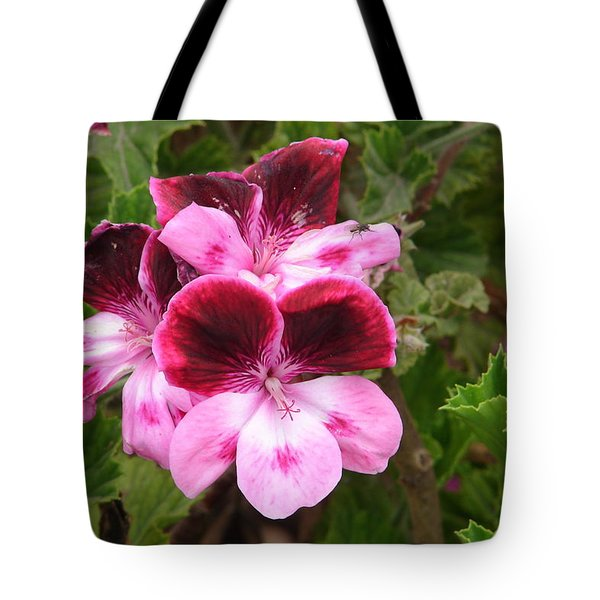 Tote Bag featuring the photograph Shades Of Pink by Lew Davis