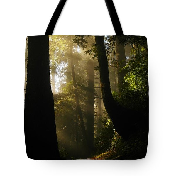 Shadow Dreams Tote Bag by Jeff Swan