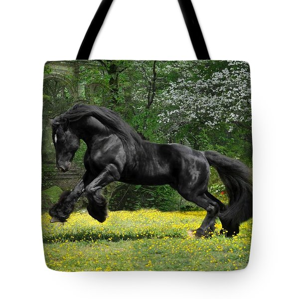 Shadow Liberty Tote Bag by Fran J Scott
