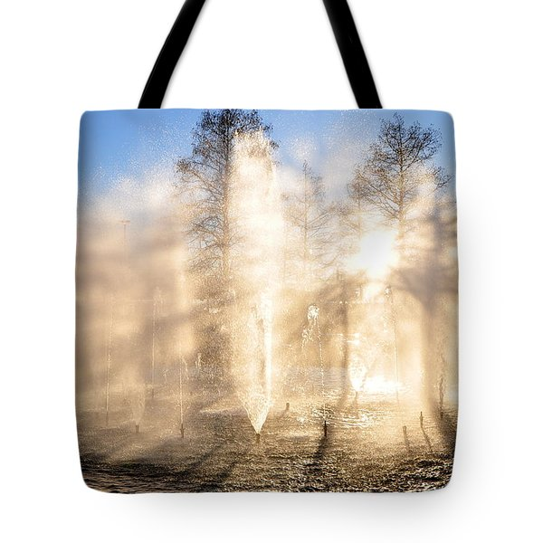 Tote Bag featuring the photograph Shadow Play by Charlotte Schafer