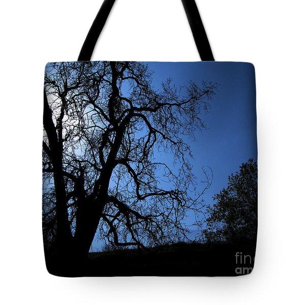Shadowlands 1 Tote Bag by Bedros Awak