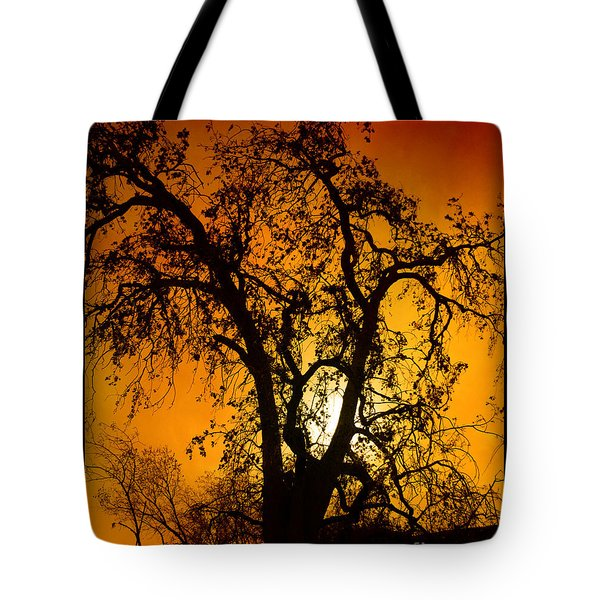Shadowlands 11 Tote Bag by Bedros Awak