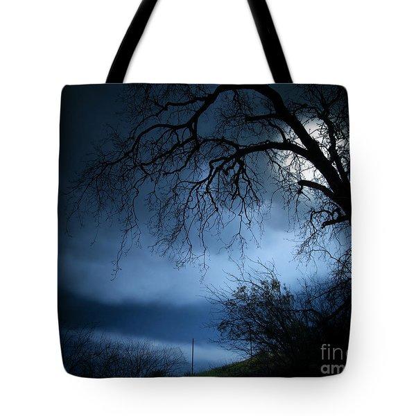 Shadowlands 3 Tote Bag by Bedros Awak