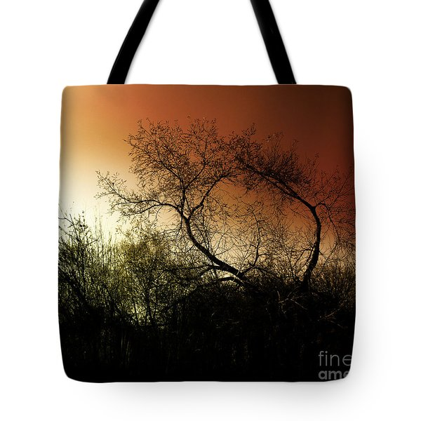 Shadowlands 9 Tote Bag by Bedros Awak