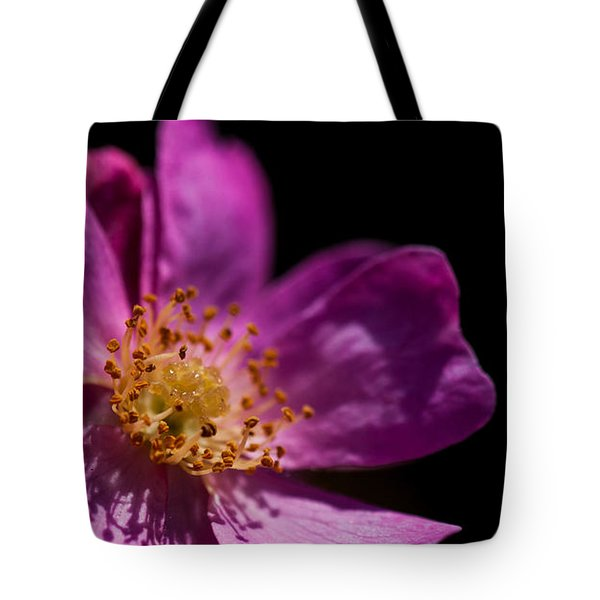 Shadows In My Heart Tote Bag by Alex Lapidus