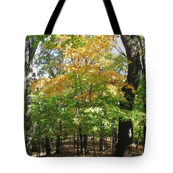 Shadows In The Forest Tote Bag