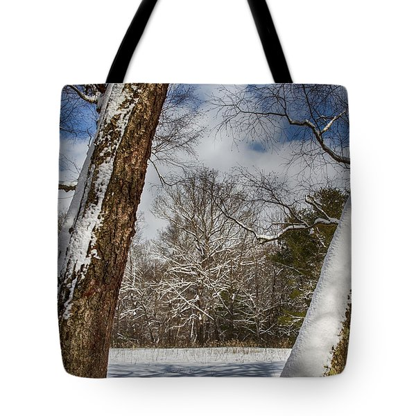 Shadows On The Snow Tote Bag by John Haldane