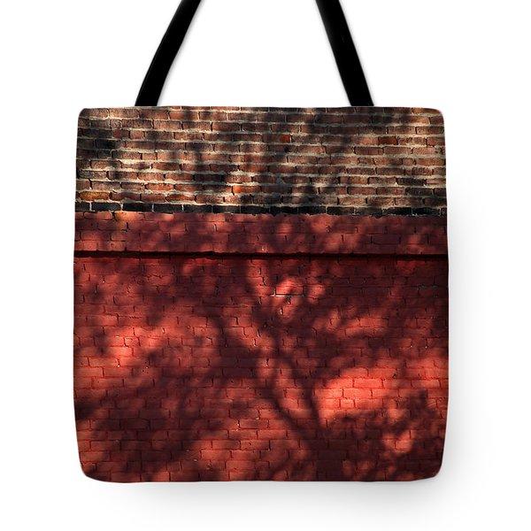 Shadows On The Wall Tote Bag by Karol Livote