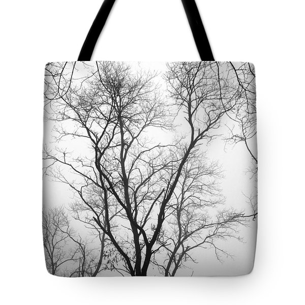 Shadows Through Time Tote Bag by Brian Wallace