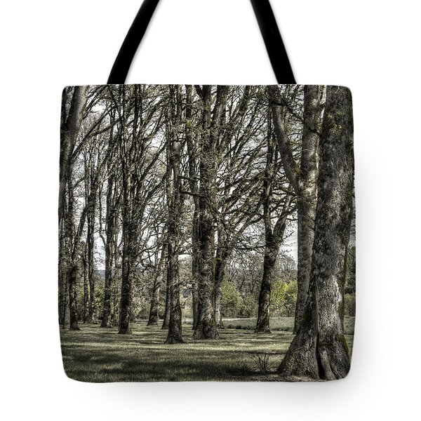 Shady Grove Tote Bag by Jean Noren