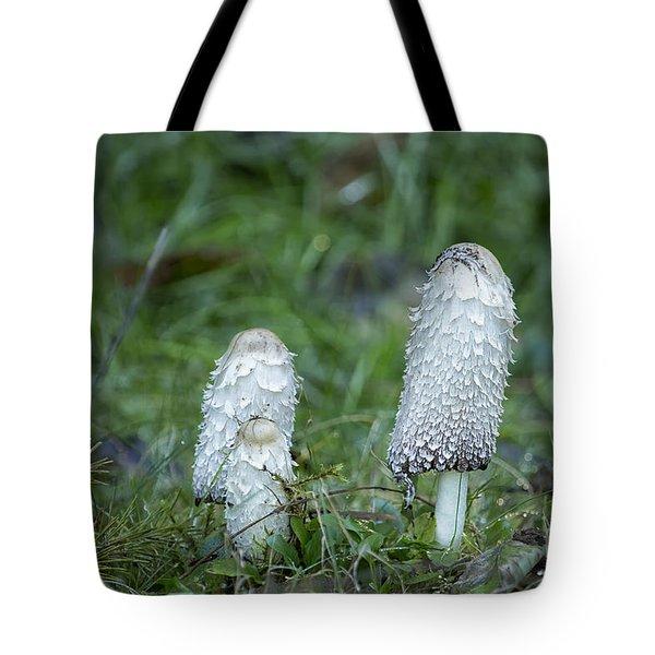 Shaggy Cap Mushroom No. 3 Tote Bag