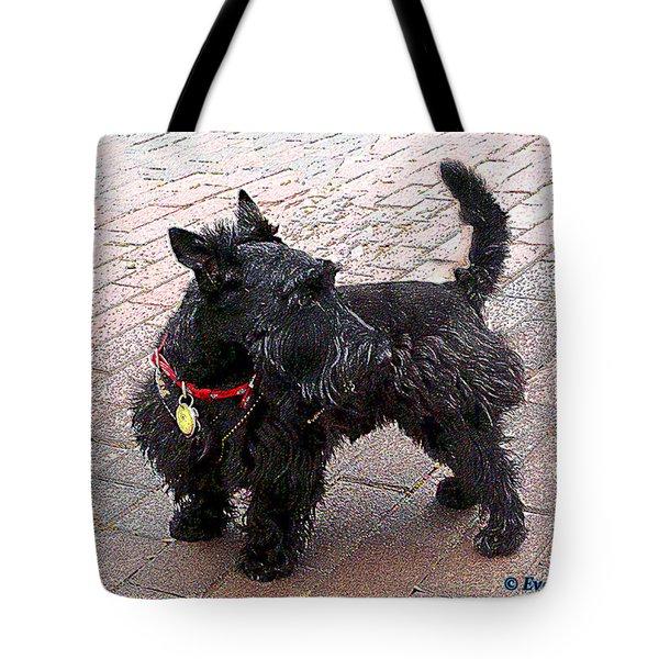 Shaggy Tote Bag