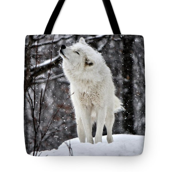Shake It Tote Bag by Heather King