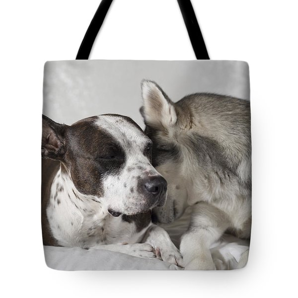 Sharing Secrets  Tote Bag