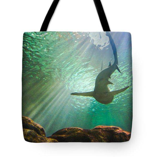 Shark Tank Tote Bag by Bill Pevlor