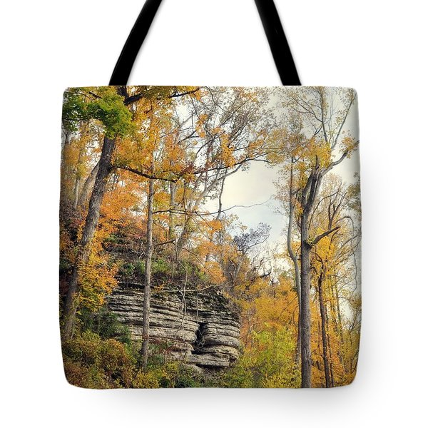 Tote Bag featuring the photograph Shawee Bluff In Fall by Marty Koch