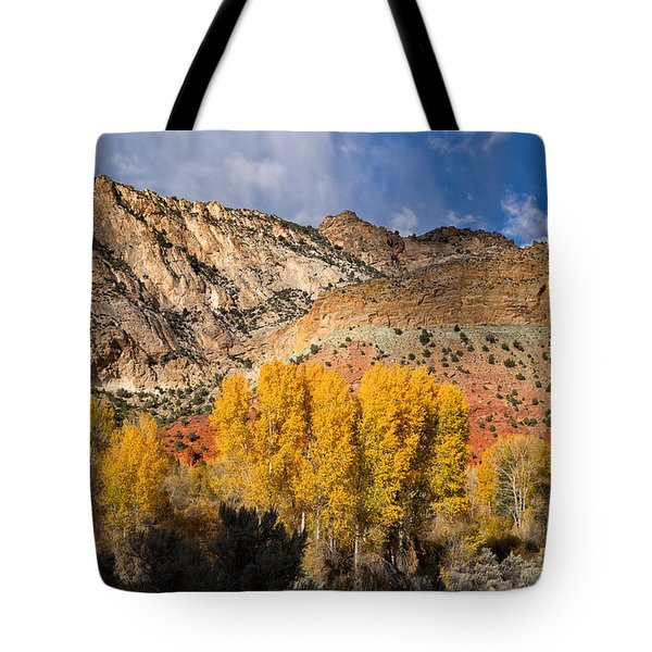 Sheep Canyon In Autumn Tote Bag