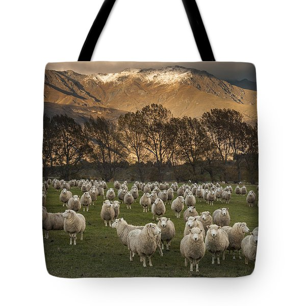 Sheep Flock At Dawn Arrowtown Otago New Tote Bag