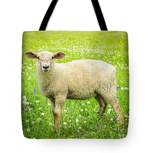 Sheep In Summer Meadow Tote Bag