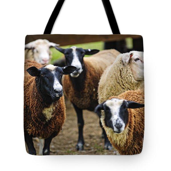 Sheep On A Farm Tote Bag by Elena Elisseeva