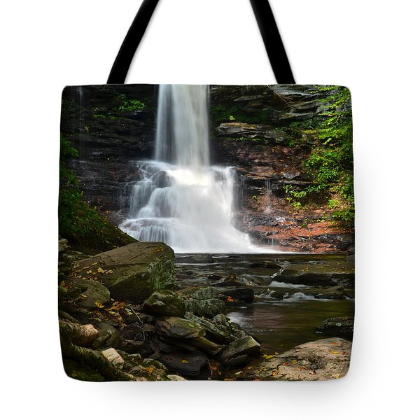 Sheldon Reynolds Tote Bag by Frozen in Time Fine Art Photography
