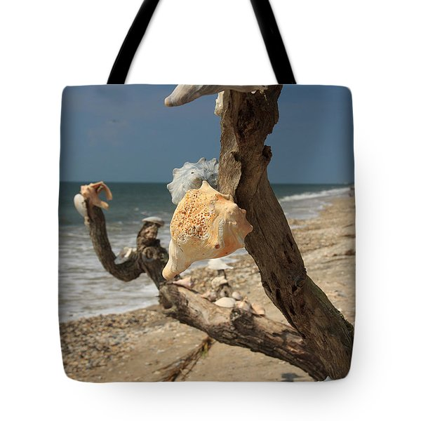 Shell Art Tote Bag