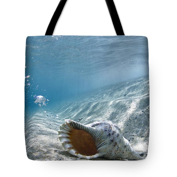 Shell Burp Tote Bag by Sean Davey