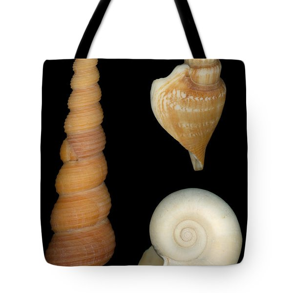 Shell - Conchology - Shells Tote Bag by Mike Savad