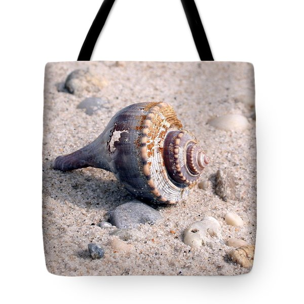 Tote Bag featuring the photograph Shell by Karen Silvestri