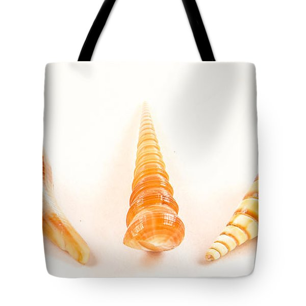 Shell Trio Tote Bag by Jean Noren