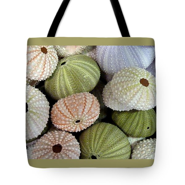 Shells 5 Tote Bag