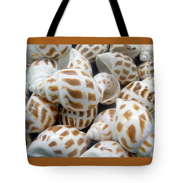 Shells - 7 Tote Bag