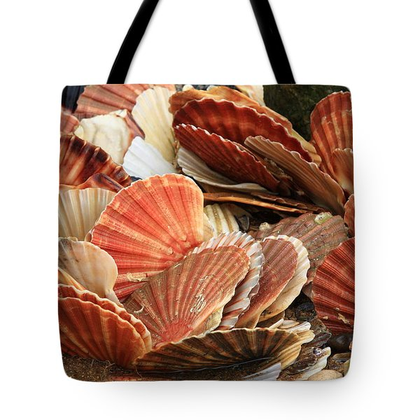 Shells On The Shore Tote Bag