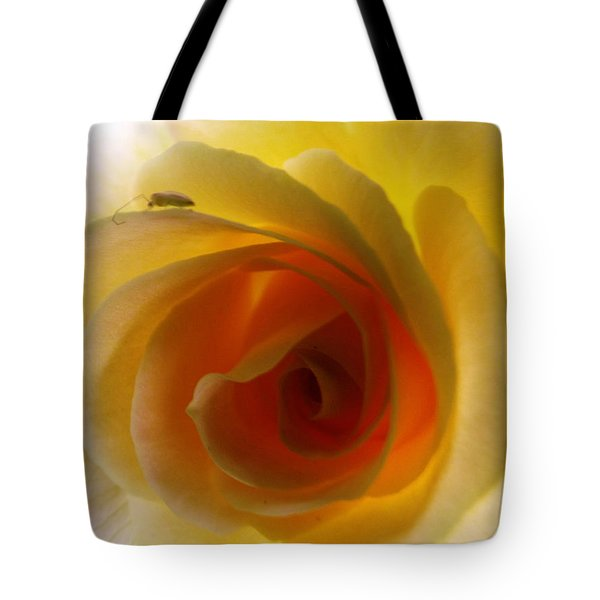 Tote Bag featuring the photograph Shelter Me From Harm by Robyn King
