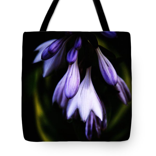 Tote Bag featuring the photograph Shelter Me by Linda Shafer