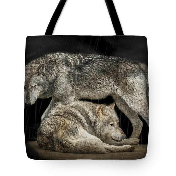 Shelter Tote Bag