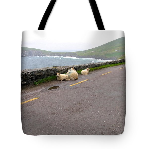 Shelter Tote Bag by Suzanne Oesterling