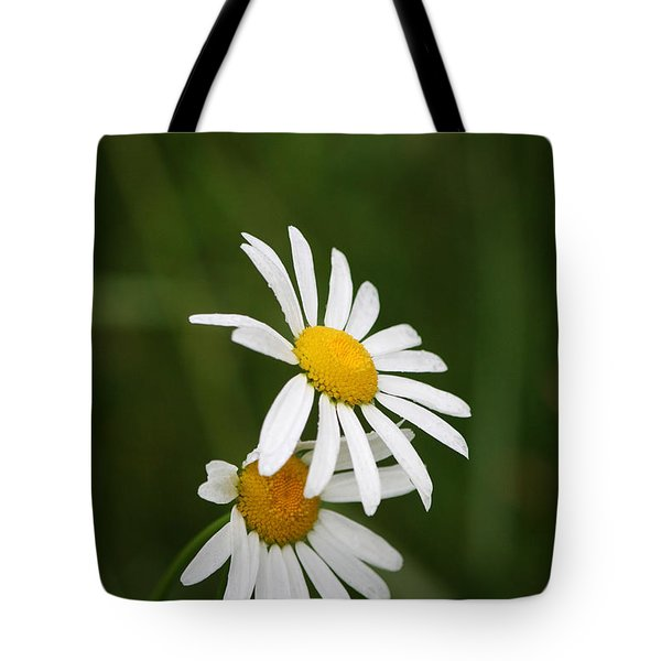 Sheltering Petals Tote Bag by Kathleen Scanlan