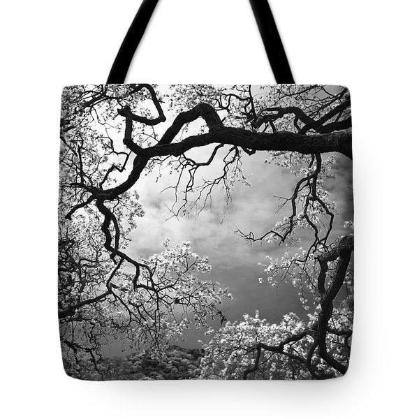 Sheltering Sky Tote Bag