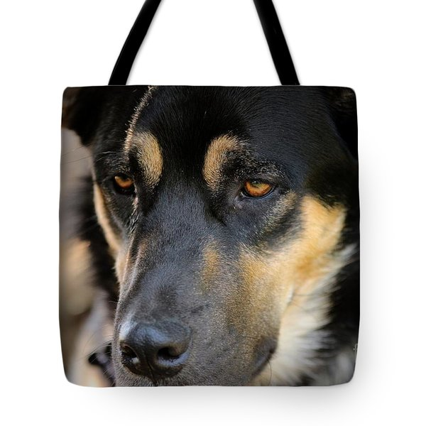 Shepherd Face Tote Bag