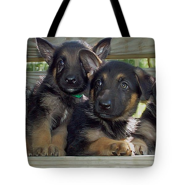 Shepherd Pups 2 Tote Bag by Aimee L Maher Photography and Art Visit ALMGallerydotcom