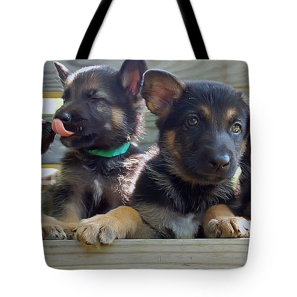 Shepherd Pups 5 Tote Bag by Aimee L Maher Photography and Art Visit ALMGallerydotcom