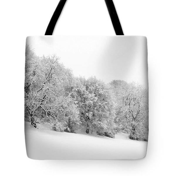 Sherman's Wood Tote Bag by Anne Gilbert