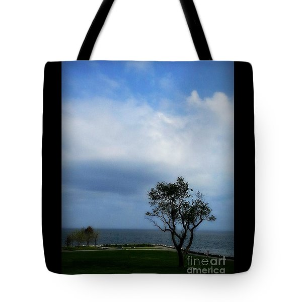 Tote Bag featuring the photograph Sherwood Island by Kristine Nora