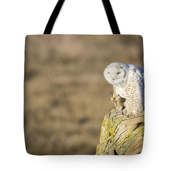 Tote Bag featuring the photograph She's Got The Look by Windy Corduroy