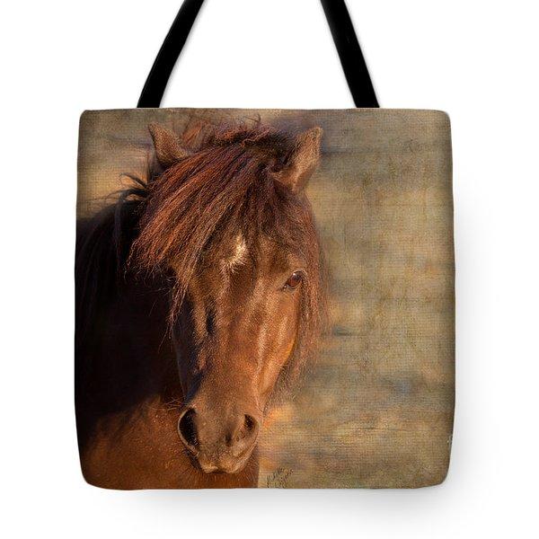Shetland Pony At Sunset Tote Bag