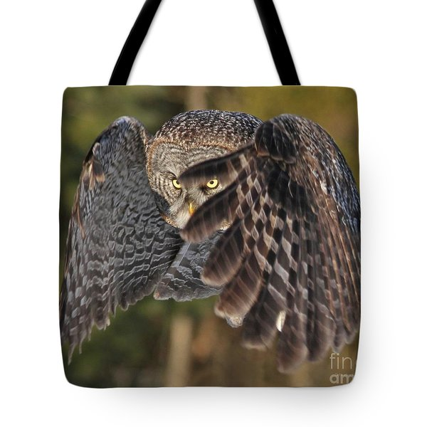 Shields Up Tote Bag by Heather King