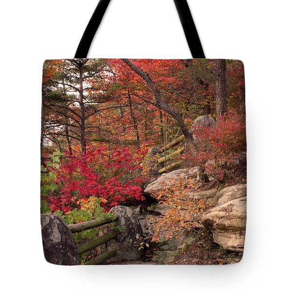 Shifting Colors Tote Bag by David Troxel