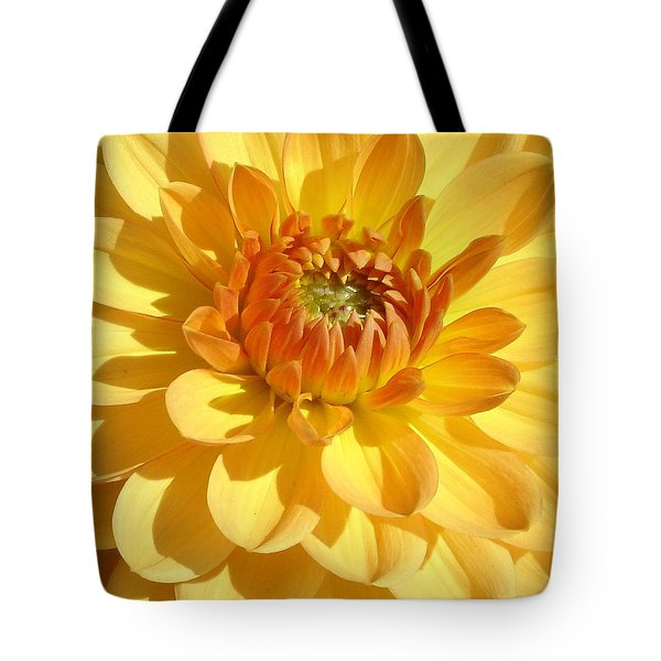 Shine Bright Tote Bag by Ramabhadran Thirupattur